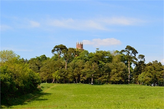 Folly Tower from a distance
