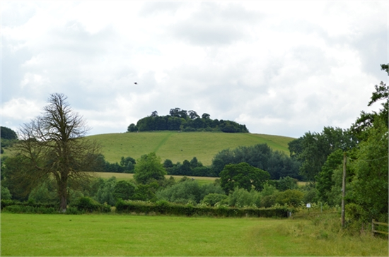 view of Wittenham Clumps